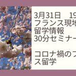 エッフェル塔と桜